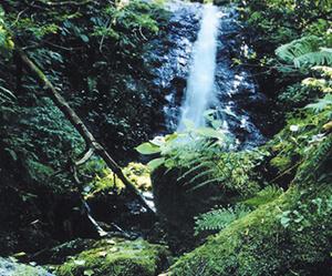 八つ淵の滝