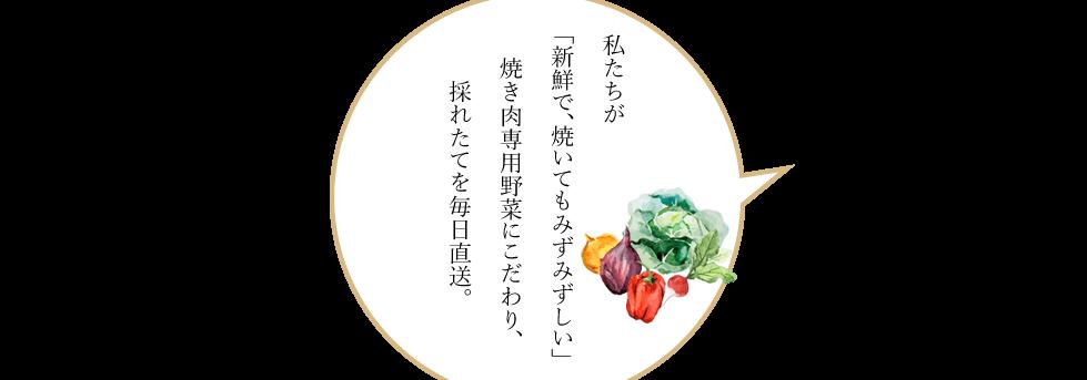 私たちが「新鮮で、焼いてもみずみずしい」焼き肉専用野菜にこだわり、採れたてを農家レストランだいきち 大津堅田店へ毎日直送。