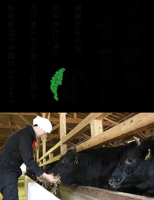 大吉牧場 里山育ち|創業百有余年。肉牛四代に渡り受け継がれる想いと技術を牧場直送で農家レストランだいきち 大津堅田店へお届けいたします。